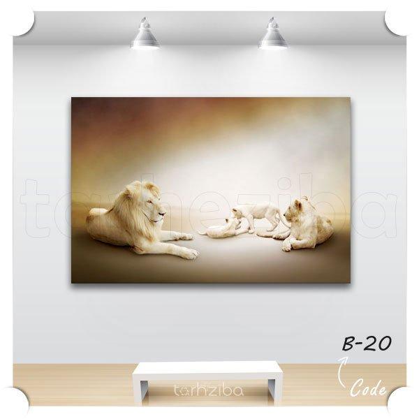 تابلو عکس دکوراتیو شیرهای زیبا