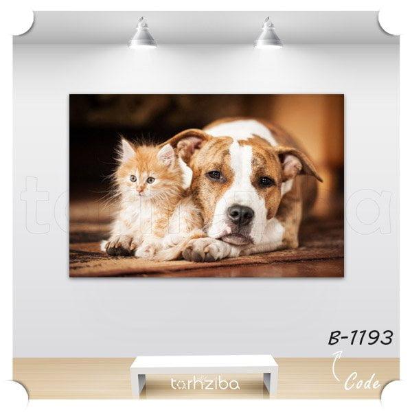 تابلو دکوری دوستی سگ و گربه
