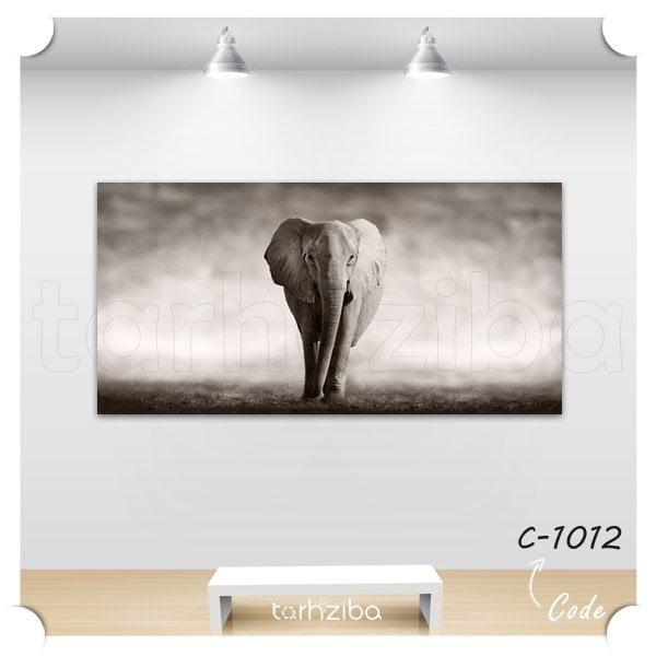 تابلو فیل در نمای سیاه و سفید