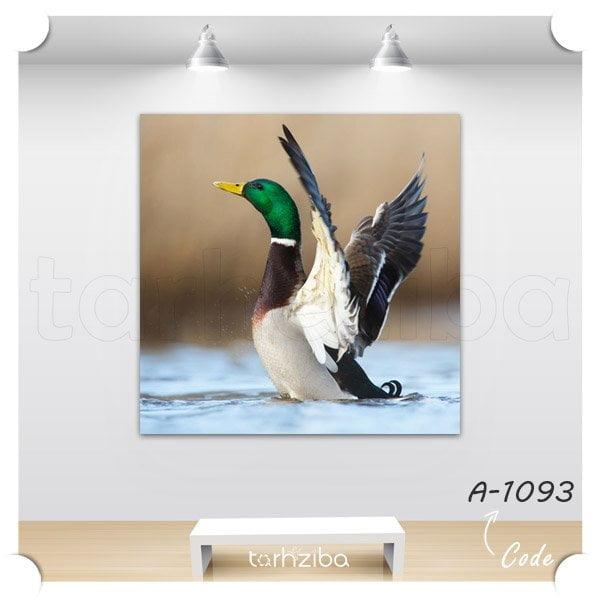 تابلو دکوری پرواز اردک