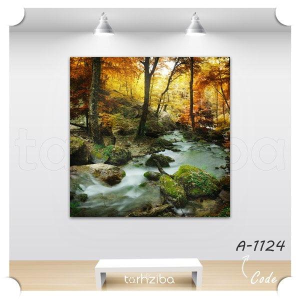 تابلو عکس منظره جنگل