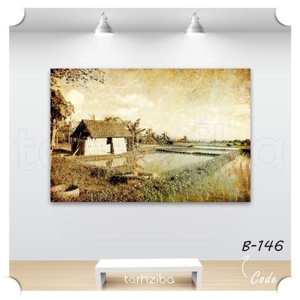 تابلو عکس مزرعه برنج