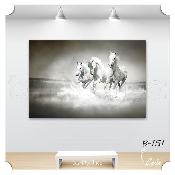 تابلو اسب و ساحل دریا
