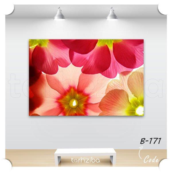 تابلو پرتره گلهای زیبا