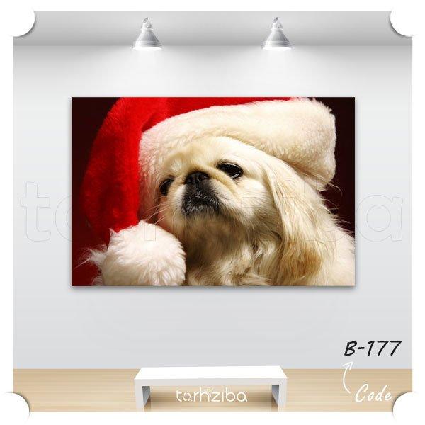 تابلو دکوری سگ زیبا