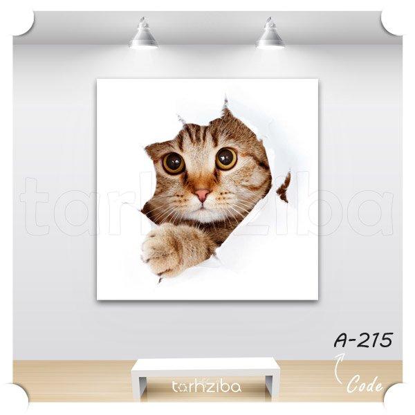 تابلو گربه کوچولوی فضول