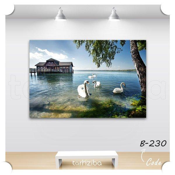 تابلو عکس قوها و دریاچه