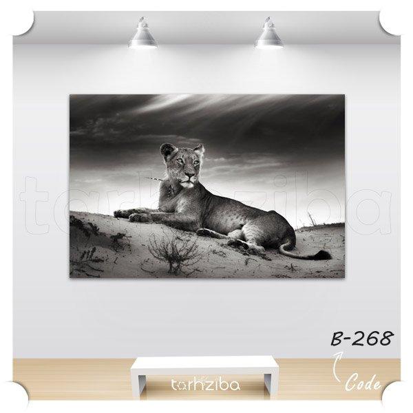 تابلو شیر سیاه و سفید