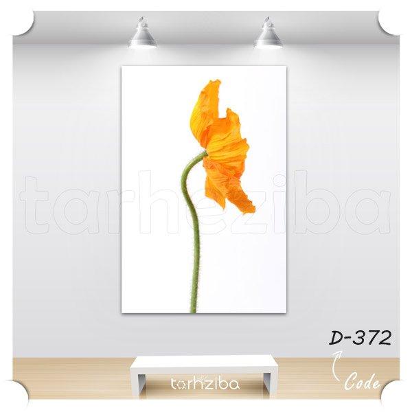 فروش تابلو گل شقایق الوان
