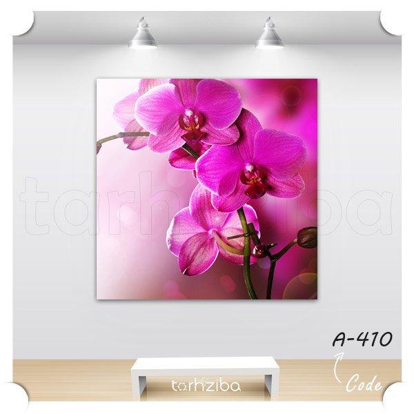 تابلو عکس دکوری گل ارکیده