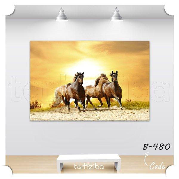 تابلو عکس اسبهای دونده