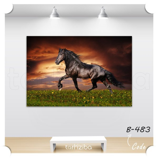 تابلو عکس اسب رمنده