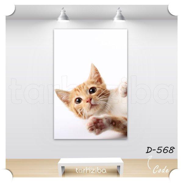 تابلو عکس پرتره گربه