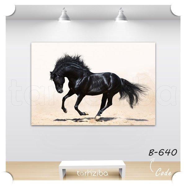تابلو دکوری اسب سیاه