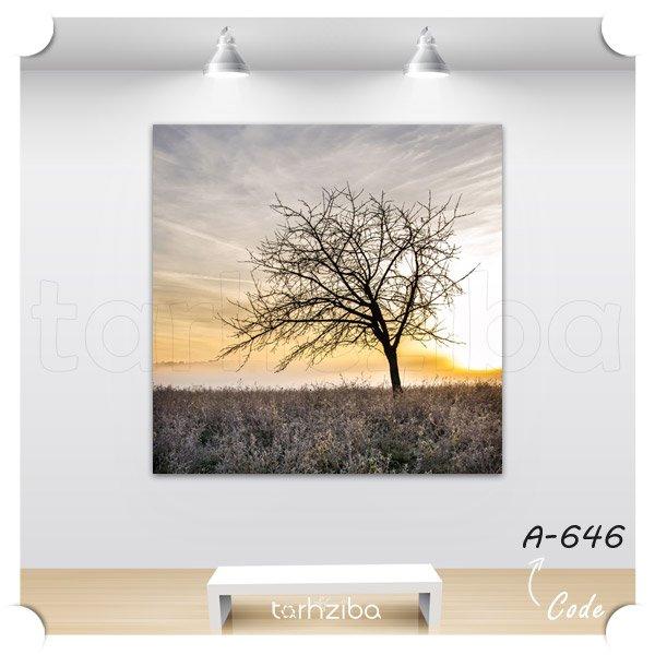 تابلو عکس درخت و غروب