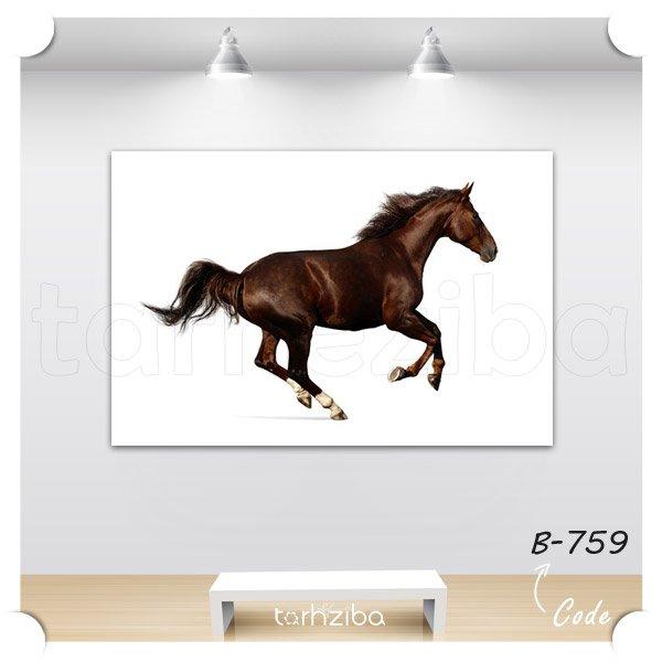 تابلو عکس اسب قهوه ای