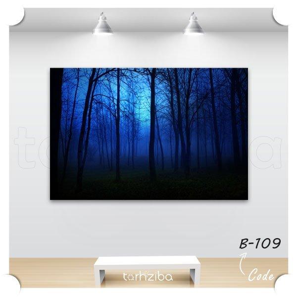تابلو عکس جنگل مه گرفته