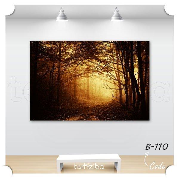تابلو عکس جنگل مه گرفته در غروب