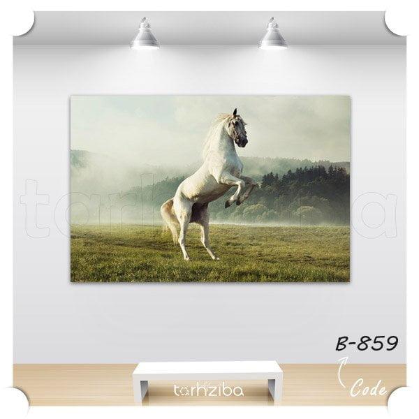 تابلو عکس اسب سفید و رم کرده