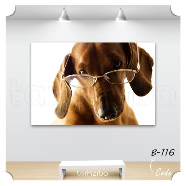 حذف شرط: تابلو پرتره سگ زیبا تابلو پرتره سگ زیبا
