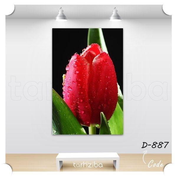 تابلو دکوری گل لاله قرمز