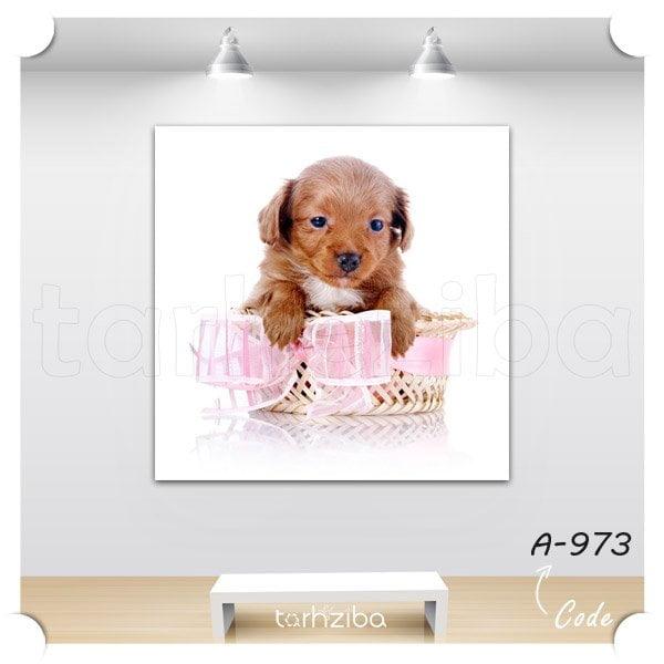 تابلو عکس سگ پاپی