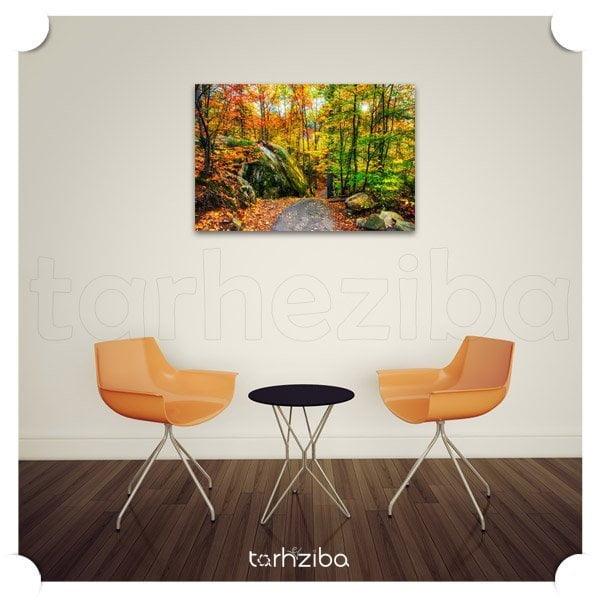 تابلو عکس جنگل زیبای پاییزی