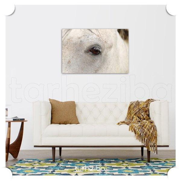 تابلو دیواری پرتره اسبی