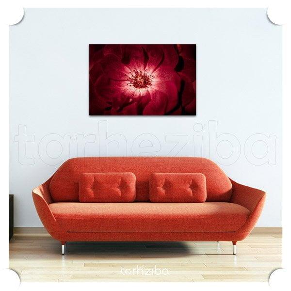 تابلو عکس پرتره گل اندام