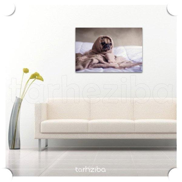تابلو مدرن سگ لرزه