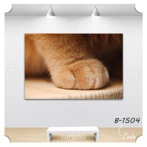 فروش تابلو عکس حیوانات