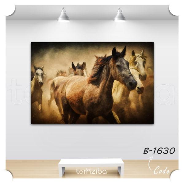 فروش تابلو عکس اسب های زیبا
